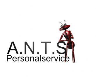 Firma A.N.T.S. Dienstleistungen Personalservice und Arbeitsvermittlung aus Naumburg