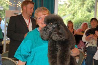 Firma Hundesalon Hundestudio Uschi professionelles Styling aus Hannover