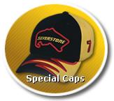 Firma 1a Bestickte Baseball Caps, Kappen, Visors, Mützen & Werbetextilien nach Maß! Dyna Company International aus Aachen