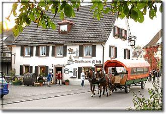 Firma Gasthaus zum Pflug aus Loerrach